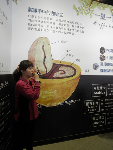Guide sedang menjelaskan struktur biji kopi
